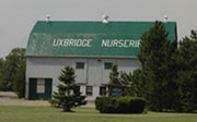 Uxbridge Nurseries